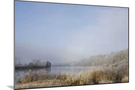 Frost on the Tall Grass Along the Shore of a Lake; Thunder Bay, Ontario, Canada-Design Pics Inc-Mounted Photographic Print