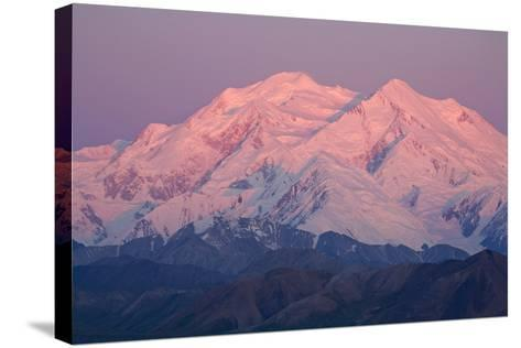 Mt.Mckinley as Seen from Eielson Visitor Center Denali National Park Alaska-Design Pics Inc-Stretched Canvas Print