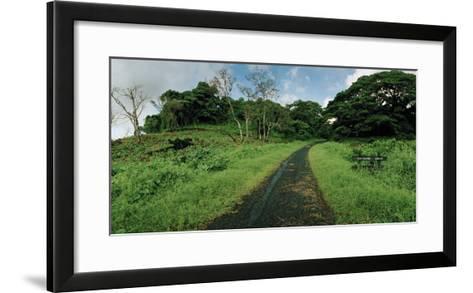 Dateline Drive on Taveuni Island-Macduff Everton-Framed Art Print