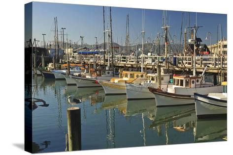Fishermen's Terminal; San Francisco California United States of America-Design Pics Inc-Stretched Canvas Print