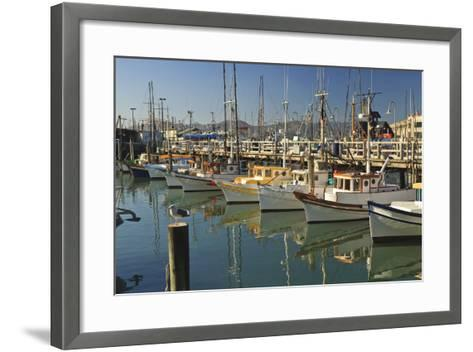 Fishermen's Terminal; San Francisco California United States of America-Design Pics Inc-Framed Art Print