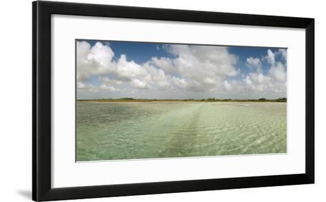 The Crystal Clear Water of an Ancient Maya Canal in Sian Ka'An Biosphere Reserve-Macduff Everton-Framed Art Print