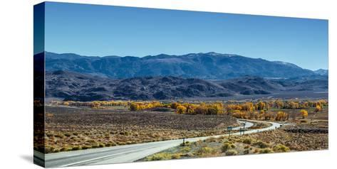 A Road Through and Autumn Landscape Headed Towards the Sierra Nevada Mountains-Babak Tafreshi-Stretched Canvas Print