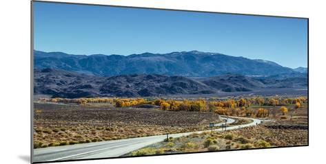 A Road Through and Autumn Landscape Headed Towards the Sierra Nevada Mountains-Babak Tafreshi-Mounted Photographic Print