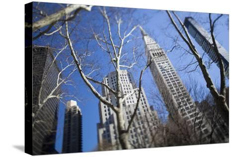 Looking Up Through Trees at Skyscrapers in New York. USA-Design Pics Inc-Stretched Canvas Print