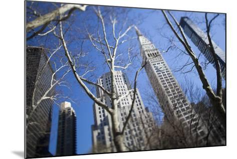 Looking Up Through Trees at Skyscrapers in New York. USA-Design Pics Inc-Mounted Photographic Print