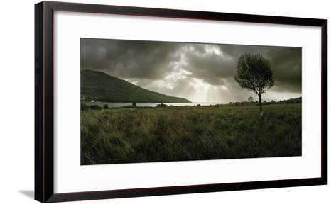 A Solitary Tree Overlooks Loch Na Dal in the Distance-Macduff Everton-Framed Art Print