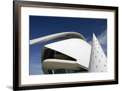 Palau De Les Arts Reina Sofia Building by Santiago Calatrava-Design Pics Inc-Framed Art Print