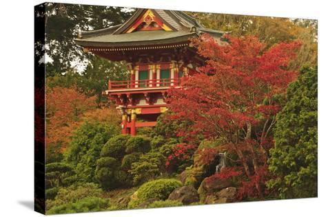 Japanese Tea Garden in Golden Gate Park; San Francisco California United States of America-Design Pics Inc-Stretched Canvas Print