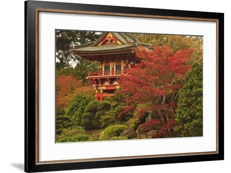 Japanese Tea Garden in Golden Gate Park; San Francisco California United States of America-Design Pics Inc-Framed Art Print