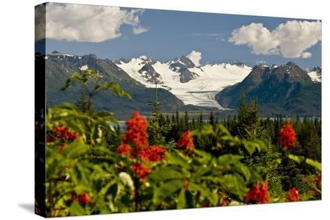 Summer Scenic of Grewingk Glacier and the Kenai Mountains of Kachemak Bay State Park-Design Pics Inc-Stretched Canvas Print