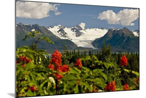 Summer Scenic of Grewingk Glacier and the Kenai Mountains of Kachemak Bay State Park-Design Pics Inc-Mounted Photographic Print
