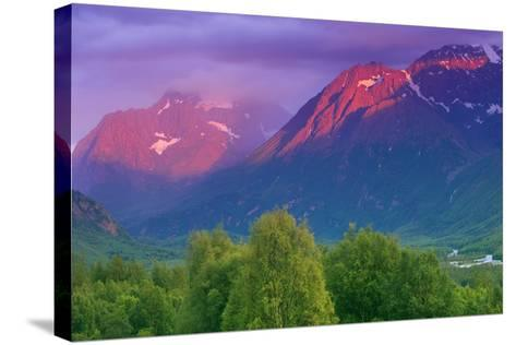 Aplenglow Sunset over Polar Bear Peak and Eagle Peak-Design Pics Inc-Stretched Canvas Print