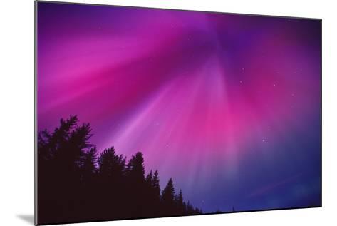 Aurora Corona over Crow Creek Sc Alaska Winter-Design Pics Inc-Mounted Photographic Print