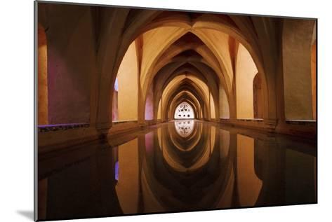 Bath of Dona Maria De Padilla at Alcazar-Design Pics Inc-Mounted Photographic Print