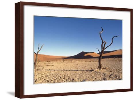 Desert Landscape-Design Pics Inc-Framed Art Print