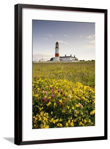 Souter Lighthouse; South Shields Marsden South Tyneside Tyne and Wear England-Design Pics Inc-Framed Art Print