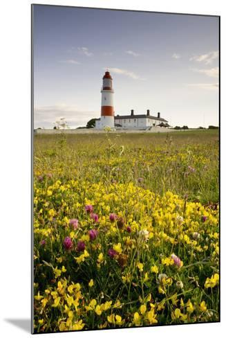 Souter Lighthouse; South Shields Marsden South Tyneside Tyne and Wear England-Design Pics Inc-Mounted Photographic Print
