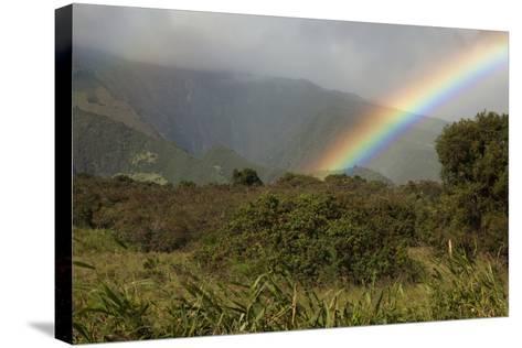 Hawaii, Maui, a Rainbow over the Lush Kaupo Gap-Design Pics Inc-Stretched Canvas Print