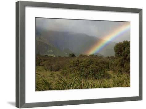 Hawaii, Maui, a Rainbow over the Lush Kaupo Gap-Design Pics Inc-Framed Art Print