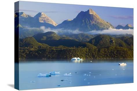 Icebergs Floating-Design Pics Inc-Stretched Canvas Print