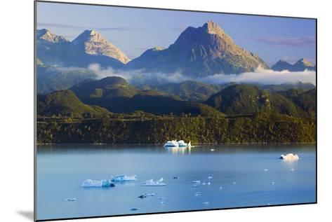 Icebergs Floating-Design Pics Inc-Mounted Photographic Print
