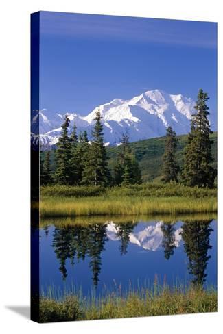 Mt Mckinley Reflecting in Nugget Pond Denali National Park Interior Alaska Summer-Design Pics Inc-Stretched Canvas Print