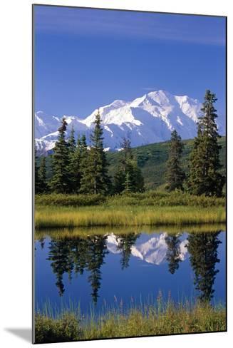 Mt Mckinley Reflecting in Nugget Pond Denali National Park Interior Alaska Summer-Design Pics Inc-Mounted Photographic Print