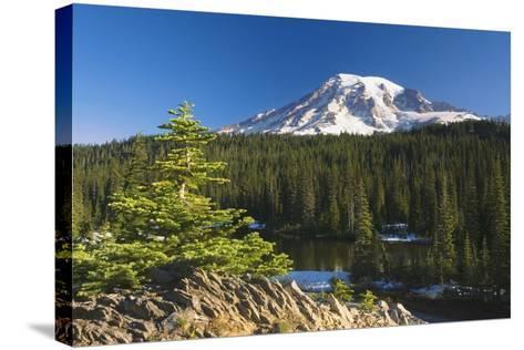 Snow-Capped Mountain; Washington,USA-Design Pics Inc-Stretched Canvas Print