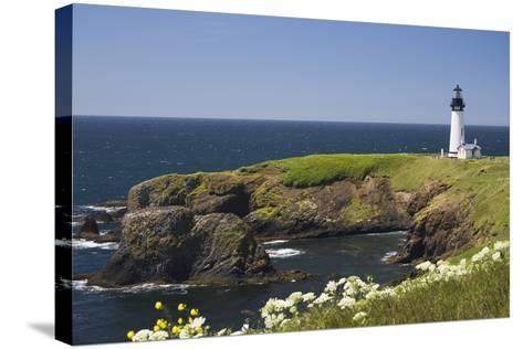 White Lighthouse on the Ocean with Blue Sky and Wildflowers, Newport, Oregon-Design Pics Inc-Stretched Canvas Print