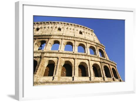 The Colosseum and Blue Sky, Close Up-Design Pics Inc-Framed Art Print