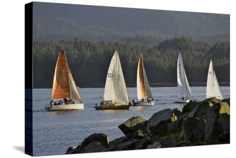 Sailboats Race in Competition Near Ketchikan, Alaska During Summer-Design Pics Inc-Stretched Canvas Print
