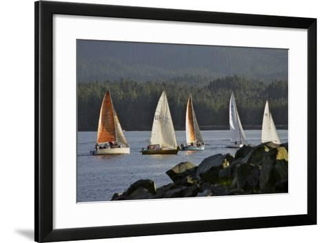 Sailboats Race in Competition Near Ketchikan, Alaska During Summer-Design Pics Inc-Framed Art Print