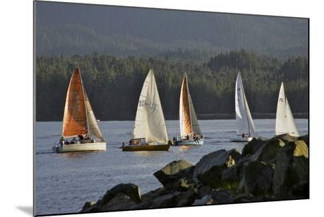 Sailboats Race in Competition Near Ketchikan, Alaska During Summer-Design Pics Inc-Mounted Photographic Print