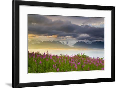 Field of Fireweed on Hill Overlooking Kachemak Bay and Grewingk Glacier-Design Pics Inc-Framed Art Print