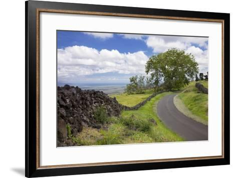 Hawaii, Maui, Kula, a Stone Wall Lines a Country Road with Views of Maui in the Background-Design Pics Inc-Framed Art Print