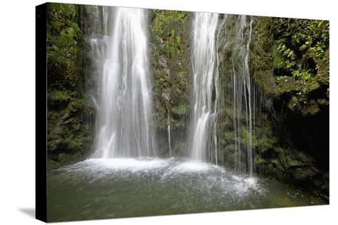 Hawaii, Maui, Makamakaole Gulch, Waihee Ridge Trail, Waterfall and Pond-Design Pics Inc-Stretched Canvas Print