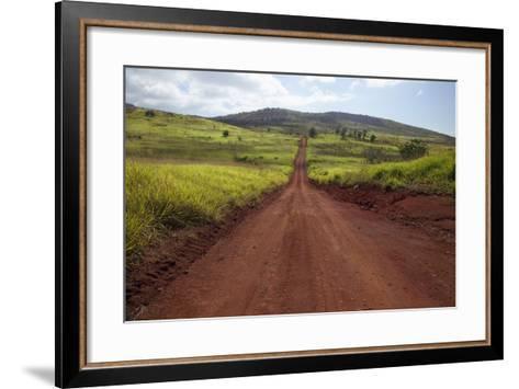 Hawaii, Lanai, the Long Red Dirt Road of Munrow Trail-Design Pics Inc-Framed Art Print