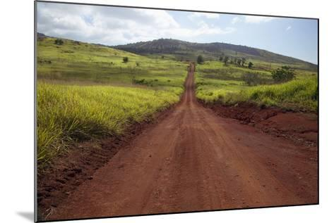 Hawaii, Lanai, the Long Red Dirt Road of Munrow Trail-Design Pics Inc-Mounted Photographic Print