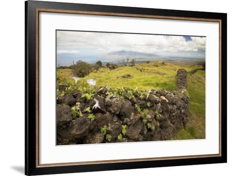 Hawaii, Maui, Kula, a Stone Wall Lines a Country Road-Design Pics Inc-Framed Art Print