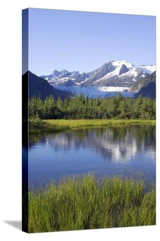 View of Mendenhall Glacier with Pond and Green Grass in Foreground Juneau Southeast Alaska Summer-Design Pics Inc-Stretched Canvas Print