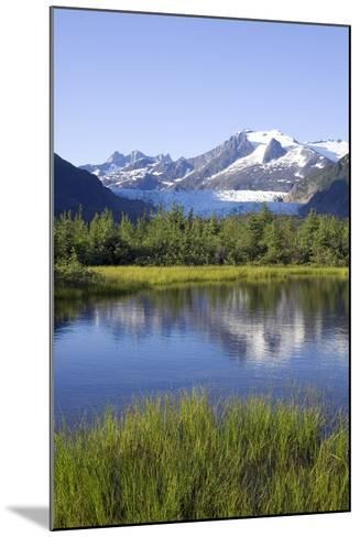 View of Mendenhall Glacier with Pond and Green Grass in Foreground Juneau Southeast Alaska Summer-Design Pics Inc-Mounted Photographic Print