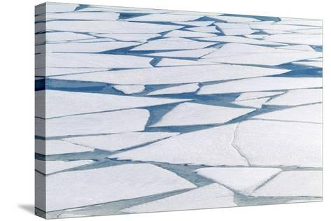 Winter Ice Layer on Portage Lake Breaking Up with Spring Thaw Southcentral Alaska Portage Valley-Design Pics Inc-Stretched Canvas Print