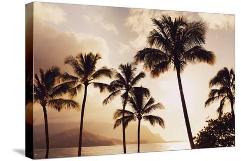 Hawaii, Kauai, Hanalei Bay, Palm Trees at Sunset-Design Pics Inc-Stretched Canvas Print