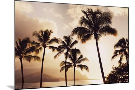 Hawaii, Kauai, Hanalei Bay, Palm Trees at Sunset-Design Pics Inc-Mounted Photographic Print
