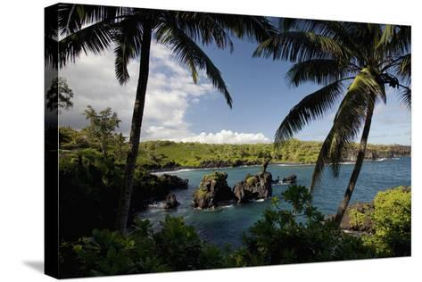 Hawaii, Maui, a Sunny View of Waianapanapa from Behind Palm Trees-Design Pics Inc-Stretched Canvas Print