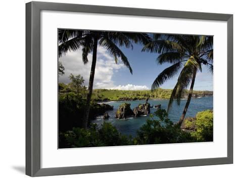 Hawaii, Maui, a Sunny View of Waianapanapa from Behind Palm Trees-Design Pics Inc-Framed Art Print