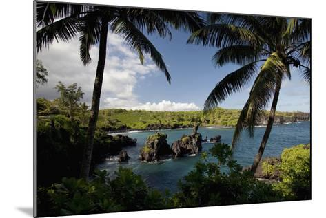 Hawaii, Maui, a Sunny View of Waianapanapa from Behind Palm Trees-Design Pics Inc-Mounted Photographic Print