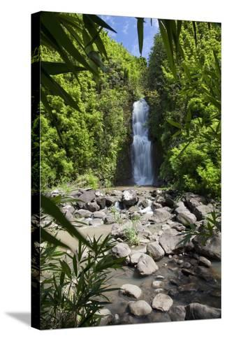 Hawaii, Maui, Hana, a Waterfall Surrounded by Lush Bamboo Plants-Design Pics Inc-Stretched Canvas Print
