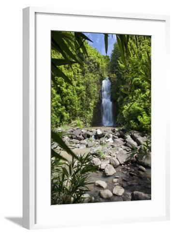 Hawaii, Maui, Hana, a Waterfall Surrounded by Lush Bamboo Plants-Design Pics Inc-Framed Art Print